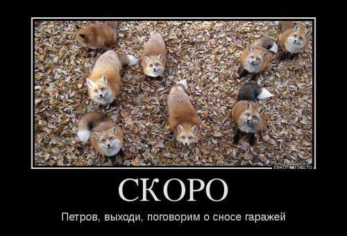 858679_skoro_demotivators_to.jpg