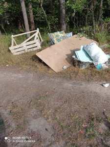 Фото мусора в лесу.jpeg
