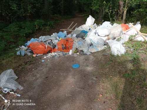 Фото мусора - свалка.jpeg